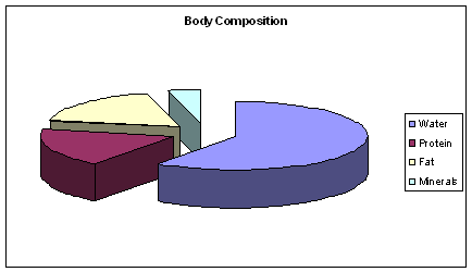 Graph showing body composition - minerals, protein, fat and water percentages.